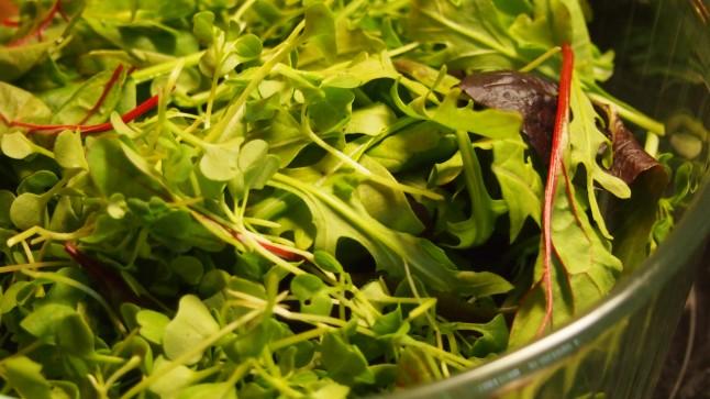 vesimelonisalaatti, vesimeloni-fetasalaatti, salaattimix, salaattisekoitus